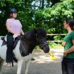 Gesunderhaltender Unterricht für Pferd & Reiter