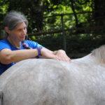 Verena bei der Massage des langen Rückenmuskels